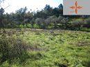 Castelo Branco  338 m²  Terrain  pièces