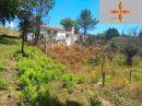 Leiria    pièces 136 m² Terrain