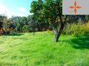 Castelo Branco   pièces 243 m² Terrain