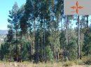 pièces Terrain 0 m²  Castelo Branco
