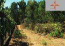Excellent terrain de 2.7 hectares constructible