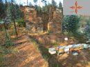 Terrain 0 m² Castelo Branco   pièces