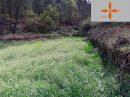 Terrain  Castelo Branco   pièces 0 m²