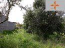 Terrain Castelo Branco  44 m²  pièces