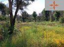 Leiria   pièces 0 m² Terrain
