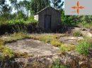 Castelo Branco   pièces Terrain 0 m²