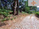 Terrain  pièces 0 m² Leiria