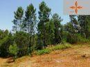 Terrain agricole accesible 1 680m2