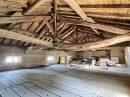 Maison Saint-Didier-sur-Chalaronne  8 pièces 375 m²