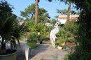 7 pièces Maison 228 m²  Biguglia Cordon lagunaire de la Marana