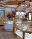 Droit au bail Moorea-Maiao Moorea 206 m² 6 pièces