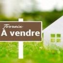 Terrain 720 m² Dangé-Saint-Romain   pièces