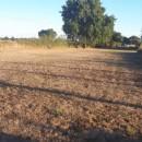 Terrain 2807 m²   pièces