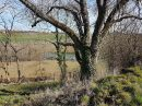 Propriété <b>13 ha 66 a </b> Tarn-et-Garonne
