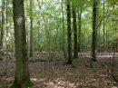 Propriété <b>26 ha </b> Haute-Marne