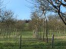 Propriété <b>16 ha 62 a </b> Mayenne