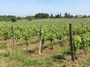 Propriété <b>07 ha 75 a </b> Gironde