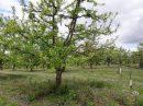Propriété <b>24 ha 58 a </b> Lot-et-Garonne