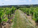 Propriété <b>15 ha </b> Lot-et-Garonne