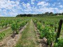Propriété <b class='safer_land_value'>15 ha </b> Lot-et-Garonne