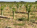 Propriété <b>15 ha 32 a </b> Allier