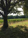 Propriété <b class='safer_land_value'>24 ha 43 a 11 ca</b> Gironde