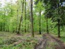 Propriété <b>67 ha 83 a </b> Meurthe-et-Moselle