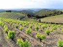 Propriété <b>05 ha </b> Pyrénées-Orientales