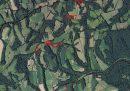 Propriété <b>03 ha 79 a </b> Pyrénées-Atlantiques