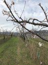 Propriété <b class='safer_land_value'>09 ha 08 a 72 ca</b> Ardèche
