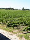 Propriété <b>32.00 ha </b> Gironde