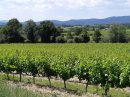 Propriété <b class='safer_land_value'>14 ha 50 a </b> Gard