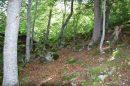 Propriété <b>02 ha </b> Hautes-Pyrénées