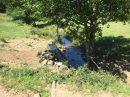 Propriété <b>61 ha 26 a </b> Cantal