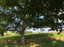 Propriété <b class='safer_land_value'>12 ha </b> Pyrénées-Atlantiques