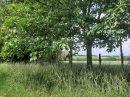 Propriété <b class='safer_land_value'>09 ha </b> Somme