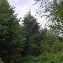 Propriété <b>29.46 ha 45.91 a </b> Meuse