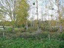 Propriété <b class='safer_land_value'>02 ha 93 a 41 ca</b> Charente-Maritime