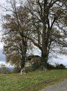 Propriété <b class='safer_land_value'>57 ha 13 a 81 ca</b> Puy-de-Dôme