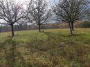 Propriété <b class='safer_land_value'>20 ha 19 a 93 ca</b> Dordogne