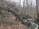 Propriété <b class='safer_land_value'>61 a 30 ca</b> Pyrénées-Atlantiques