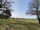 Propriété <b class='safer_land_value'>05 ha </b> Loiret