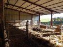 Propriété <b class='safer_land_value'>57 ha 51 a </b> Charente-Maritime