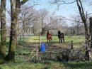 Propriété <b class='safer_land_value'>07 ha 30 a </b> Charente