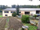 Propriété <b class='safer_land_value'>14 ha 71 a 22 ca</b> Tarn-et-Garonne