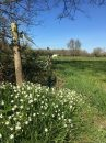 Propriété <b class='safer_land_value'>20 ha </b> Gironde