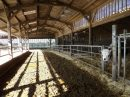 Propriété <b class='safer_land_value'>118 ha </b> Loire-Atlantique