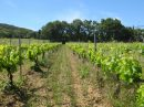 Propriété <b class='safer_land_value'>38 ha </b> Gard