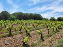 Propriété <b class='safer_land_value'>05 ha 35 a </b> Hérault