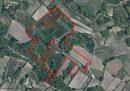 Propriété <b class='safer_land_value'>06 ha 94 a </b> Vaucluse